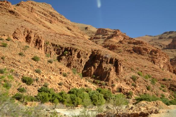 Gröna väster