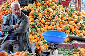 Apelsiner i mängder