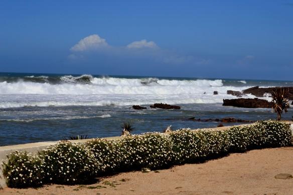 Fin strand vid Ocean Blue