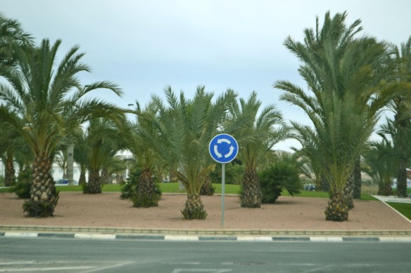 En rondell md palmer