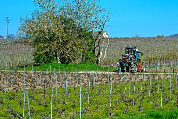 Traktor på vårbruk