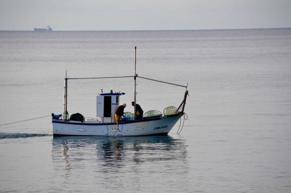 Morgonfiske 2